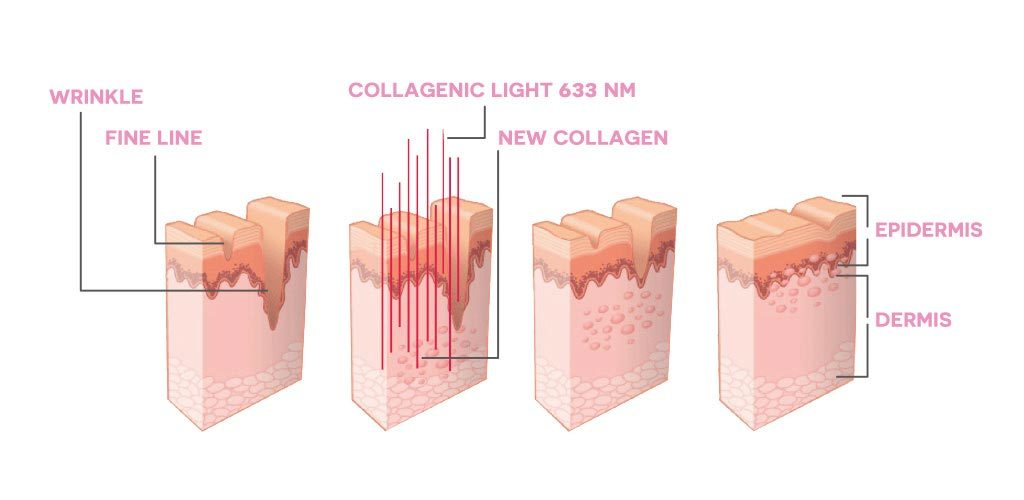 the 4 blocks are showing the details of the skin layers. Bốn block giới thiệu chi tiết các lớp da.